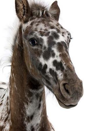 Bog, paperback Cutest Polka Dot Pony af Cs Creations