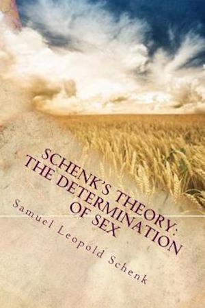 Bog, paperback Schenk's Theory af Samuel Leopold Schenk