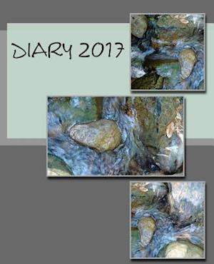 Diary 2017
