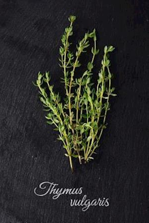 Bog, paperback Fresh Green Thyme (Thymus Vulgaris) Herb and Spice Journal af Cs Creations