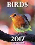 Birds 2017 Wall Calendar (UK Edition)