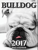 Bulldog 2017 Wall Calendar (UK Edition)