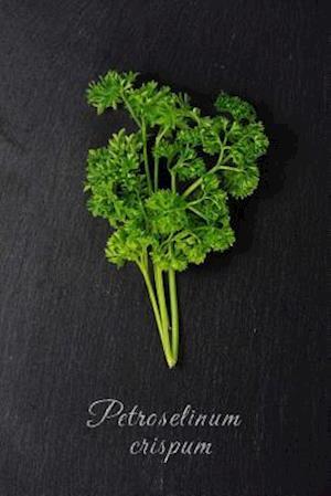 Bog, paperback Fresh Green Parsley (Petroselinum Crispum) Herb and Spice Journal af Cs Creations