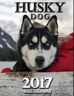 Husky Dog 2017 Wall Calendar