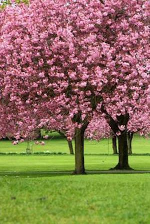 Bog, paperback Sakura Trees Journal af Dibiasio Publications