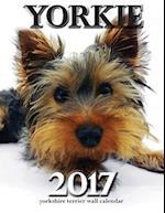 Yorkie 2017 Yorkshire Terrier Wall Calendar