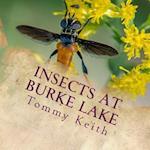 Insects at Burke Lake