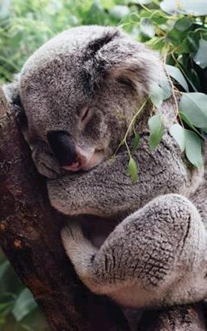 Cute Koala Lined Notebook - 120 Page, 5x8, Lined Blank Book with a Cute Koala