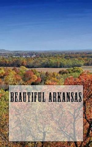 Bog, paperback Beautiful Arkansas af Travel Books