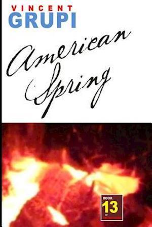 Bog, paperback American Spring af Vincent Grupi