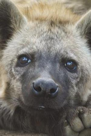 Bog, paperback The Hyena Cub Journal af Cool Image