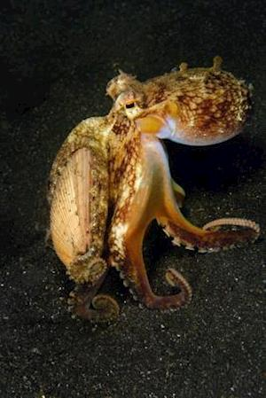 Bog, paperback The Walking Octopus Journal af Cool Image