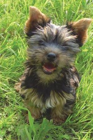 Bog, paperback Yorkshire Terrier Puppy Journal af Cool Image