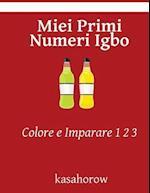 Miei Primi Numeri Igbo