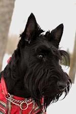 Adorable Black Scottish Terrier Dog Portrait Journal