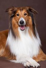 Beautiful Happy Collie Dog Journal