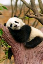 Giant Baby Panda Snoozing in a Tree Journal