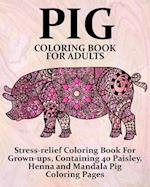 Pig Coloring Book for Adults