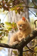 Cute Orange Kitten in a Tree Journal