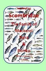 Sea Angling Scombridae the Family of Mackerel, Tuna & Bonito