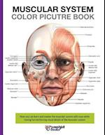 Muscular System Color Picture Book