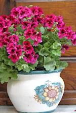 Pretty Pink Petunias in a Rustic Italian Pot Journal
