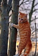 Cute Cat Getting Ready to Climb a Tree Journal