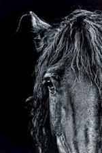 Magnificent Black Frisian Horse Portrait Journal