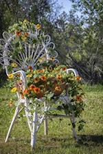A White Wicker Chair Covering in a Black-Eyed Susan Flowers in the Garden Journa