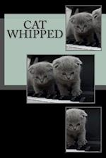 Cat Whipped
