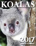 Koalas 2017 Wall Calendar
