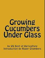 Growing Cucumbers Under Glass