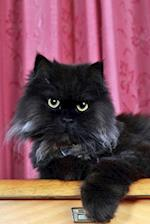 The Black Persian Cat Journal