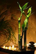 Lucky Bamboo Plant and Candles Meditation Journal