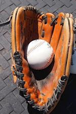 Vintage Baseball and Leather Mitt Sports Journal