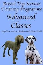 Bristol Dog Services Dog Training Programme Advanced Classes