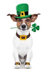 Cute Dog Dressed for St. Patrick's Day Journal