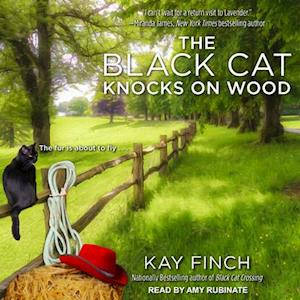Lydbog, CD The Black Cat Knocks on Wood af Kay Finch