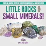 Little Rocks & Small Minerals! | Rocks And Mineral Books for Kids | Children's Rocks & Minerals Books