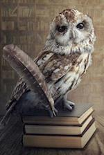 Wise Old Owl Perched on Books Illustration Journal