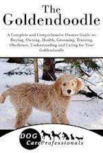 The Goldendoodle