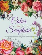 Color in Scripture