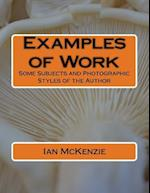 Examples of Work
