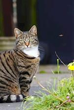 A Sweet Tabby Cat Sitting in the Garden Journal