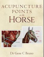 Acupuncture Points on the Horse