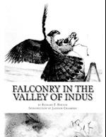 Falconry in the Valley of Indus