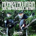 Monkey Mountain Son Tra Peninsula, Vietnam