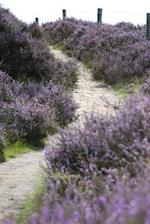 A Path Leading Up Through the Purple Heather Journal