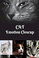 Cat Emotion Closeup
