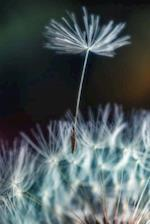 Journal Dandelion Seed in Wind Close Up